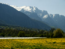 Suiss traditional spring  landscape Royalty Free Stock Image