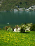 Suiss walensee  traditional spring  landscape Royalty Free Stock Photos
