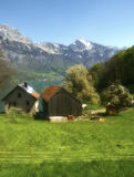 Suiss walensee  traditional spring  landscape Royalty Free Stock Photo