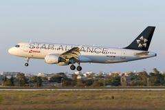 Suisse Airbus dans des couleurs de Star Alliance Image libre de droits