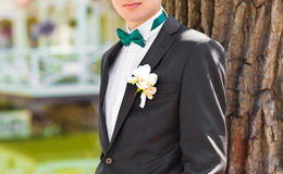 Suit of groom with bow tie and boutonniere Royalty Free Stock Photography