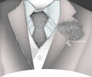 Suit. Groom in a Silver suit illustration Royalty Free Stock Photos