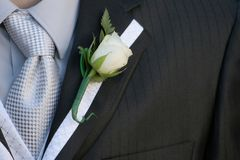 Suit smart close-up. Suit close-up of flower and tie stock photography