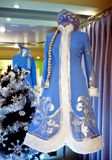 Suit Snow Maiden Royalty Free Stock Images