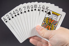 Suit of Spades Royalty Free Stock Image