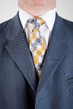 Suit and tie. Close detail on the suit and tie of an anonymous contemporary business man Royalty Free Stock Photo