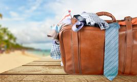 suitcase Immagine Stock