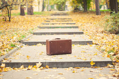 Suitcase on alley in autumn park Stock Photography