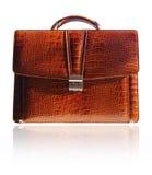 Suitcase from crocodile skin Stock Image
