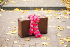 Suitcase with pink scarf on alley in autumn park Stock Images