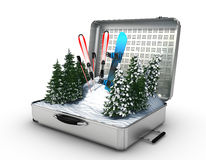 Suitcase ski and snowboard with snow inside Stock Photo