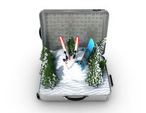 Suitcase ski and snowboard with snow inside Stock Photography
