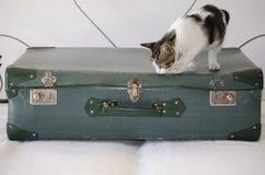 Suitcases back retro Royalty Free Stock Photos