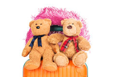 Suitcases and brown teddy bear Stock Image