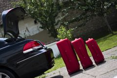 Suitcases in front of a trunk Royalty Free Stock Images
