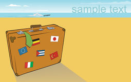 suitcuse пляжа Стоковая Фотография RF