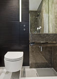 Suite bathroom in brown marble Stock Images
