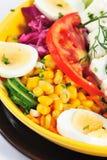 Suivez un régime la salade Image libre de droits