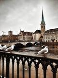 Suiza por la mañana imagen de archivo libre de regalías