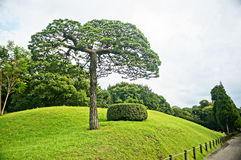 Suizenji庭院在熊本 库存照片