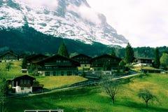 Suizo verde Alps Fotografía de archivo