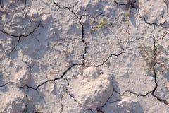 Suje a seca que terra seca a textura rachada moeu -1 Foto de Stock Royalty Free