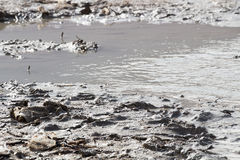Sujeira do Mar Morto na natureza Foto de Stock Royalty Free