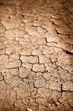 Sujeira ou lama rachada secada imagens de stock