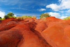 Sujeira vermelha famosa da garganta de Waimea em Kauai Imagem de Stock