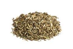 Sujetador de la hierba secada del tomillo Fotografía de archivo libre de regalías