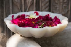 sujets de décoration du Ràjasthàn d'Inde un après-midi ensoleillé dans le jaip Images stock