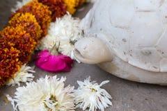 sujets de décoration du Ràjasthàn d'Inde un après-midi ensoleillé dans le jaip Photos libres de droits