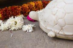 sujets de décoration du Ràjasthàn d'Inde un après-midi ensoleillé dans le jaip Photo libre de droits
