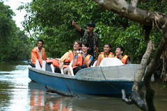 Sukau river crusie. Tourists enjoy a wonderful travel discovery through the beautiful scenery of the Mangrove Forest Kinabatangan River, Sabah, Malaysia Stock Images