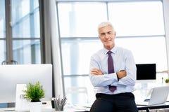 Sukces i profesjonalizm w osobie zdjęcia royalty free