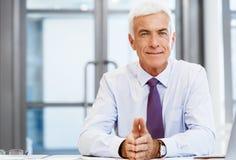 Sukces i profesjonalizm w osobie zdjęcie stock