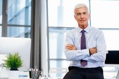 Sukces i profesjonalizm w osobie obrazy stock