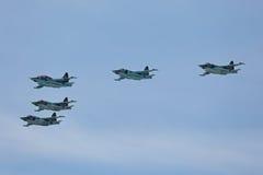 Sukhoi Su-25 Grach Obrazy Royalty Free