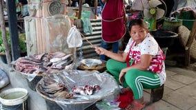 Sukhothai, Ταϊλάνδη - 2019-03-06 - ραβδί χρήσεων προμηθευτών αγοράς με την τσάντα για να κρατήσει τις μύγες από τα ψάρια της απόθεμα βίντεο
