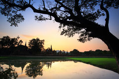 Sukhothai. Buddha in the sunlight in the evening at Wat Mahathat temple in old Sukhothai capital city in Sukhothai historical park in Northern of Thailand Stock Photo