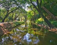 Sukhothai nationellt historiskt parkerar fotografering för bildbyråer