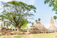 Sukhothai ruin old city Royalty Free Stock Image