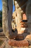 Sukhothai Tailândia da Buda Foto de Stock Royalty Free