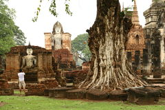 Sukhothai Thailand temples. In the jungle Stock Images