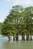 Sukko Meer zuiver Royalty-vrije Stock Foto