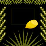 Sukkot. Judaic holiday. Traditional symbols - Etrog, lulav, hadas, arava. Frame for your text. Black background. Sukkot. Concept of Judaic holiday. Traditional royalty free illustration
