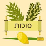 Sukkot. Judaic holiday. Traditional symbols - Etrog, lulav, hadas, arava. Torah scroll. Hebrew text - Sukkot. Sukkot. Concept of Judaic holiday. Traditional royalty free illustration