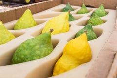 Sukkot, Sale of Etrog, green and yellow. The Jewish holiday of Sukkot Royalty Free Stock Photography