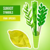 Sukkot symbols. Four species - symbols of Jewish holiday Sukkot. Vector illustration Stock Image