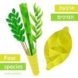 Sukkot symbols Royalty Free Stock Photography
